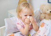 Bệnh viêm mũi dị ứng có thể bị di truyền không?