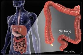 Tầm soát ung thư đại tràng không cần nội soi, không đau