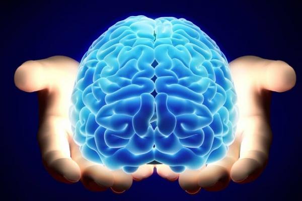 Nội thần kinh